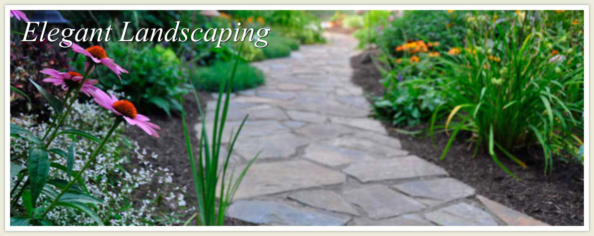 Residential and Commercial Landscaping Services in Minnesota